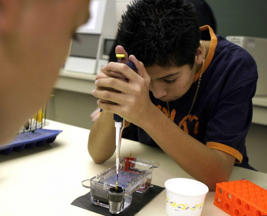 Students Need More Authentic Labs