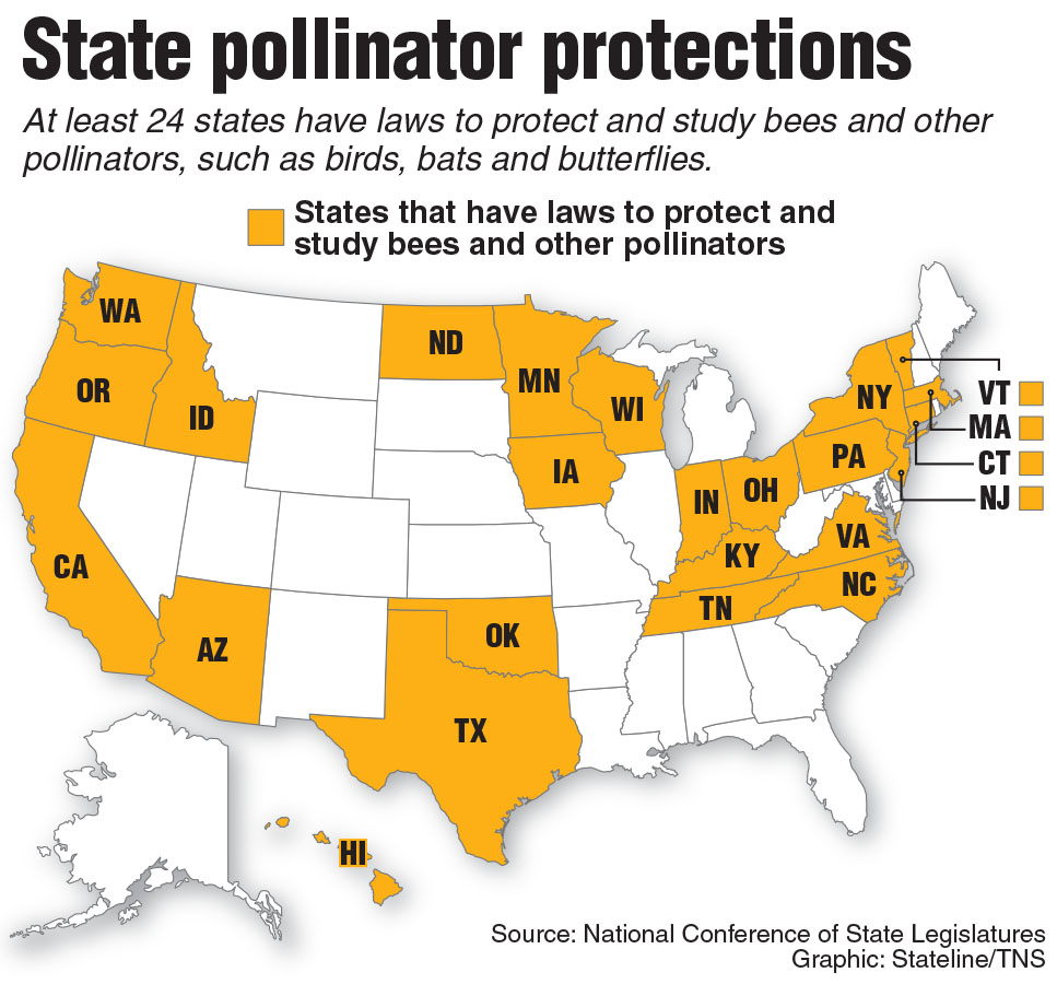 Map of states with laws to protect bees and other pollinators. Stateline 2015