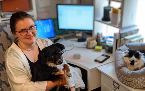 During the COVID-19 lockdown, Megan was able to continue working for Cherrybrook from home, alongside her dog, Rory, a mini Australian Shepherd, and Pusschief, a barn cat, whom Megan says is a great mouser.  (Photo courtesy of Megan McGaha)